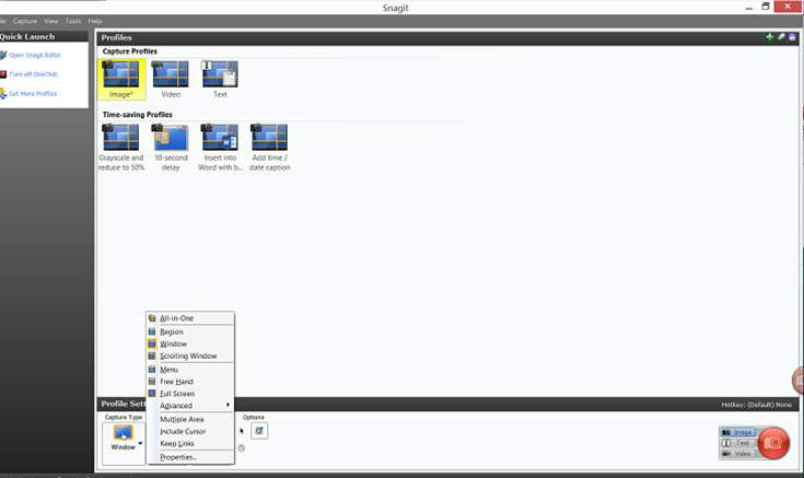 snagit_scrolling_screenshot